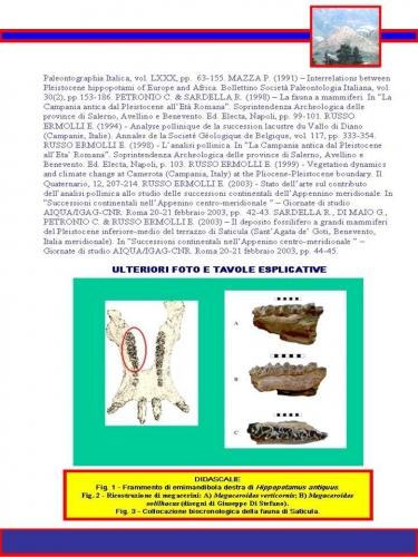 pagina37.jpg