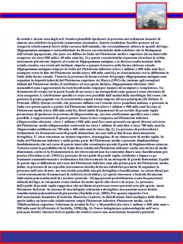 pagina36.jpg